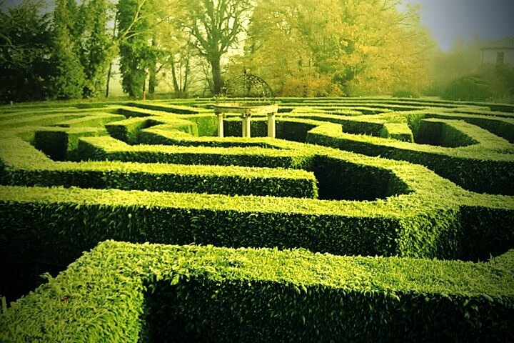 Foto di: The aMazing Hedge Puzzle